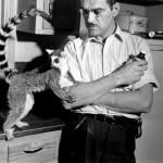 1950_Man-with-pet-Lemur-1950-520x496