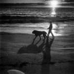 1951_A-soldier-walks-his-pet-lion-Fagen-on-the-beach-US-1951-520x525