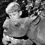 1960_Rupert-the-Rhino-1960