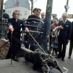 1969_Salvador-Dali-and-his-pet-anteater