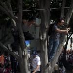 AMLO_Marcha_Reforma-11