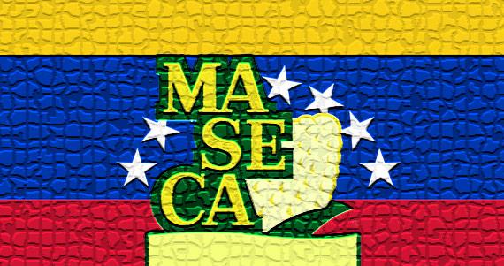 maseca_290413