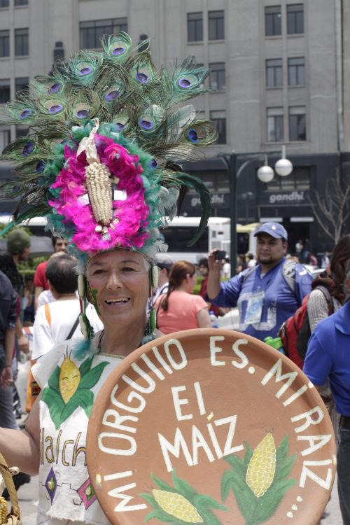 Protesta contra el maíz transgénico. Foto: Francisco Cañedo