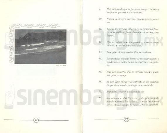 Los Templarios, tercera fuerza criminal del país: Policía Federal - Página 4 211