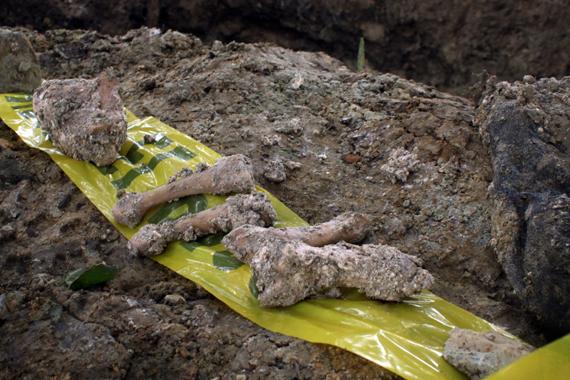 Restos encontrados en Veracruz, en marzo de este año. Foto: Cuartoscuro