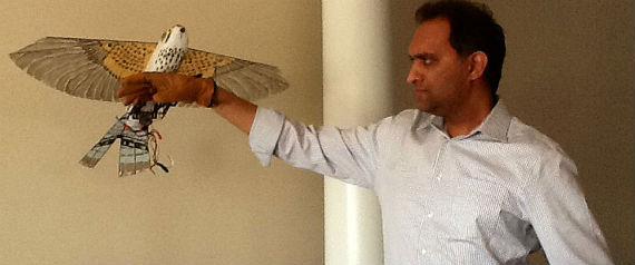 El drone creado por Bhargav Gajjar pretende imitar la apariencia de las aves, más allá de sus mecanismos de aterrizaje. Foto: El Mundo