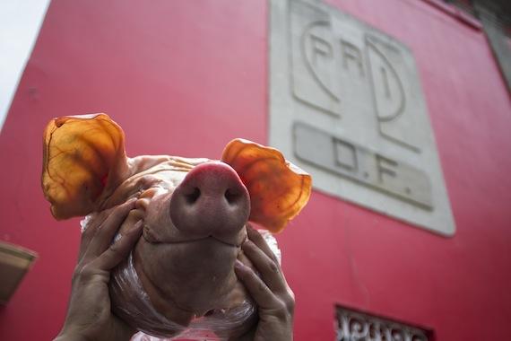 A Cuauhtémoc Gutiérrez no se le ha comprobado ningún delito: Camacho Protesta_pri-df_prostitucion-5