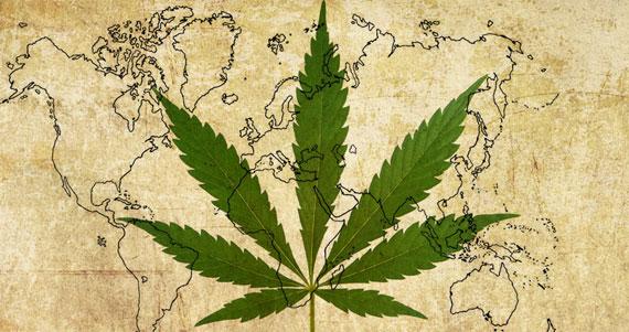 cannabis_portada