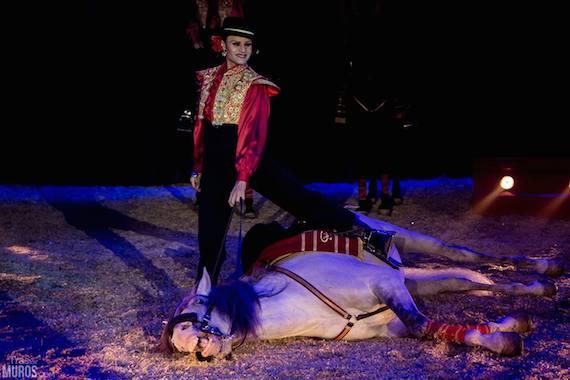 Circo Mundial, Estado Español, 2014. Foto: Tras Los Muros.