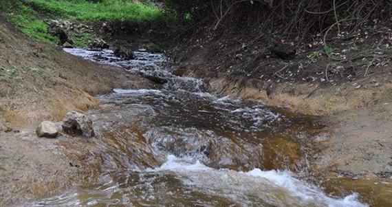 etectaron descargas de aguas residuales al afluente, por parte de la Papelera Biopapel Printing, empresa ubicada en el estado de Veracruz. Foto: Twitter  @LEnriqueBolanos