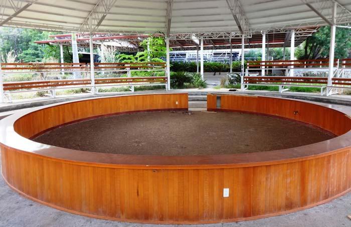 El palenque, forrado de madera, es una arena de lujo para la pelea de gallos. Foto Humberto Padgett SinEmbargo