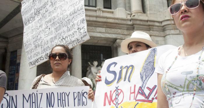 """Activistas acusan a la Sagarpa y a la Semarnat de """"litigar"""" en favor de empresas como Monsanto. Foto: Cuartoscuro."""