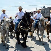El Bronco cabalga por la ciudad, Foto: Sanjuana Matínez