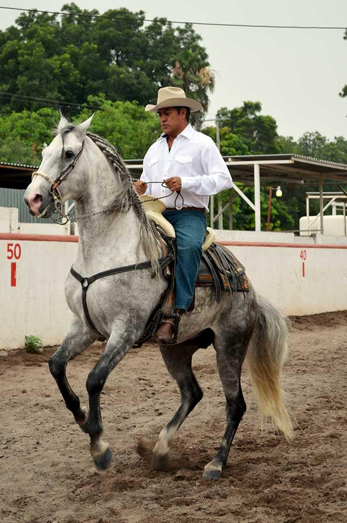 El gobernador electo montando a Gobernador, Foto: Sanjuana Martínez