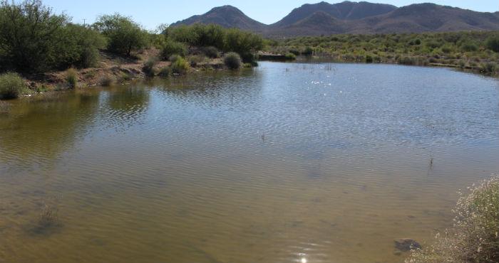 El fondo del río en una parte, más cercano a la cortina de la presa El Molinito, está negro.Foto Olivia Paredes, especial para SinEmbargo