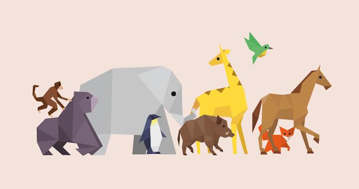 """""""Cerrar un zoo sería sinónimo de perder la posibilidad de transformarlo"""", afirma ZOOXXI, que busca cambiar los santuarios como se conocen. Foto: ZOOXXI."""