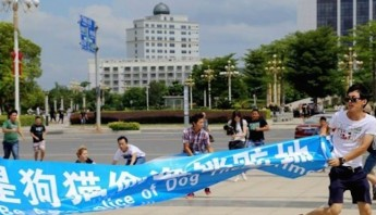 yulin-2105-protest