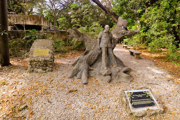 Estatua de Miguel Álvarez del Toro, fundador del ZOOMAT, espacio reconocido por la reproducción y crianza de quetzales. Foto: Especial