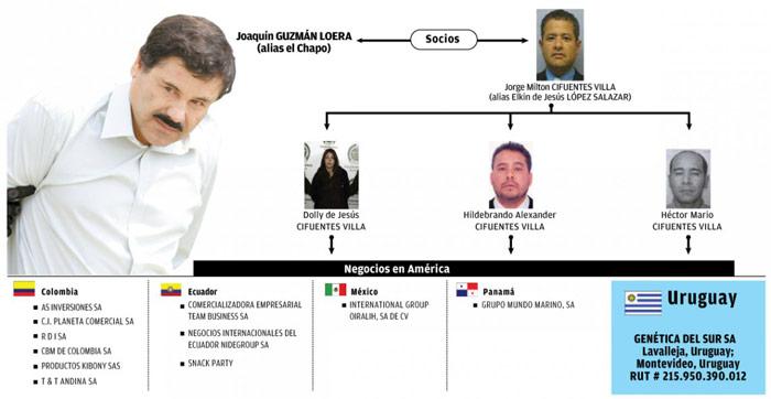 Socios-El-Chapo