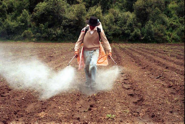 MXDF16SEP2002.- Hay actividades humanas que contribuyen a que se amplíe el agujero de la capa de ozono; como la deforestación, la combustión de gasolinas fósiles y el uso de algunos fertilizantes. El empleo de insecticidas, desodorantes, fijadores, plaguicidas, y más productos químicos que operan con spray, tienden a disminuir esa franja de ozono.