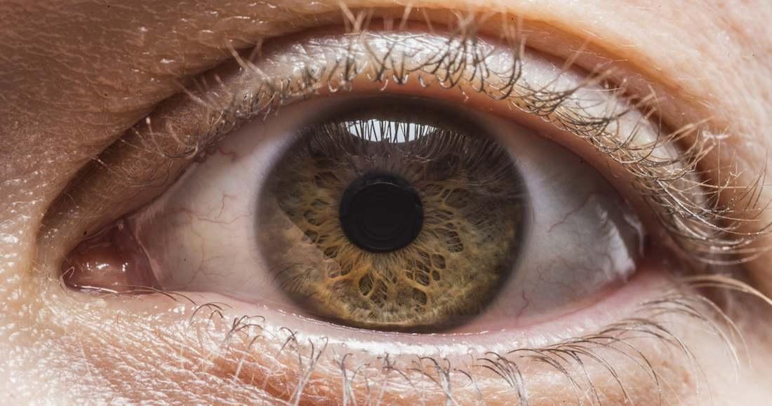 Primerísimos planos muestran la diversidad del ojo humano (FOTOS)