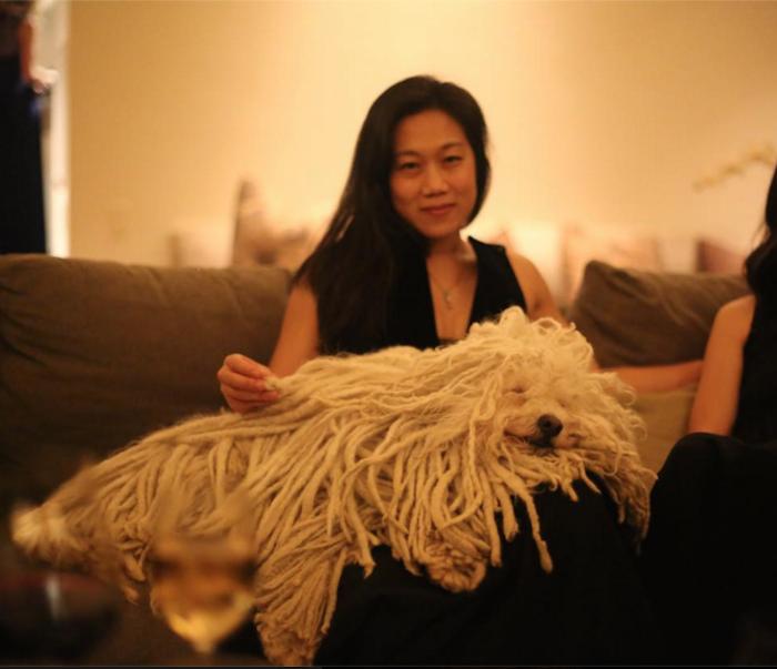 Beast, el perro ovejero de Mark Zuckerberg. Foto: Facebook Beast