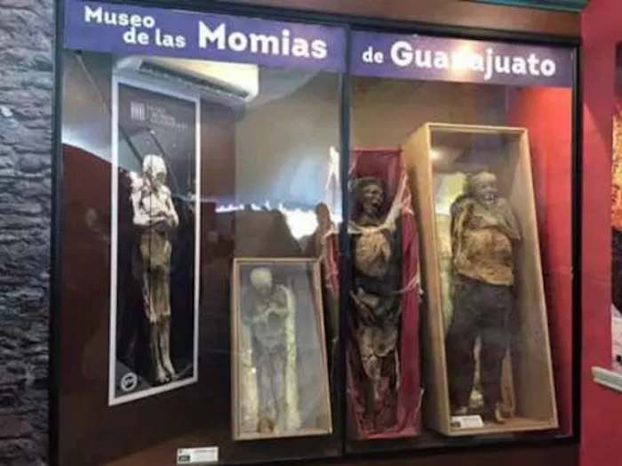 Momias en Mazatlán. Foto: Especial
