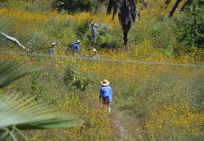 La comunidad de Carrizalillo en Guerrero. Foto: Cuartoscuro.