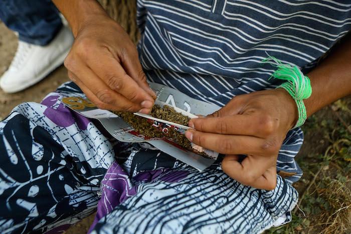 El Congreso iniciará con la discusión de la despenalización de la mariguana. Foto: Foto: Francisco Cañedo, SinEmbargo