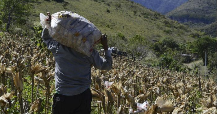 Campesinos. Foto: Cuartoscuro