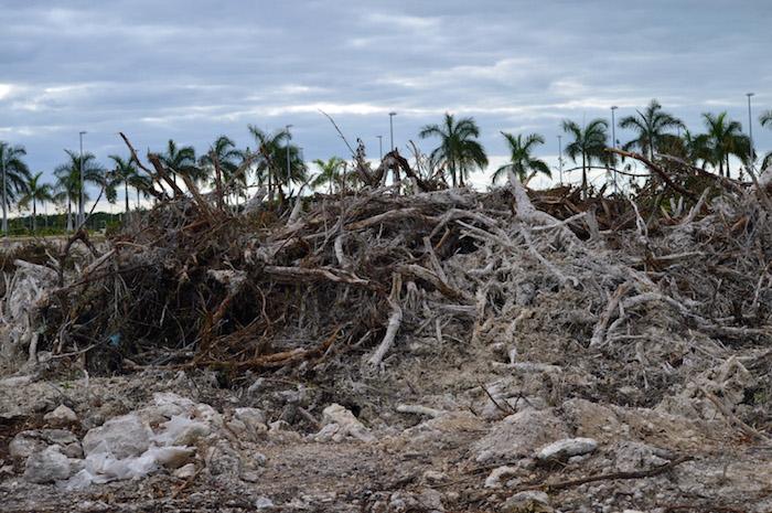 La madrugada del 16 de enero se inició con maquinaria pesada la preparación del terreno para la construcción del Proyecto Malecón Tajamar, en Cancún, Quintana Roo. Foto: Cuartoscuro.