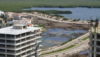 El 90 por ciento de la zona del manglar fue destruida. Foto: Cuartoscuro