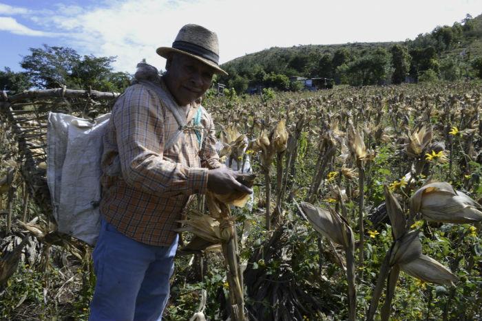 Para organizaciones campesinas, la crisis alimentaria tiene solución en los pequeños productores nacionales. Foto: Cuartoscuro