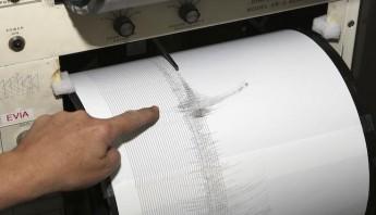 Un sismógrafo recoge la gráfica de un terremoto. Foto: EFE/Archivo