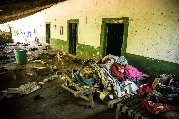 Desplazados: la tragedia invisible de la violencia en México