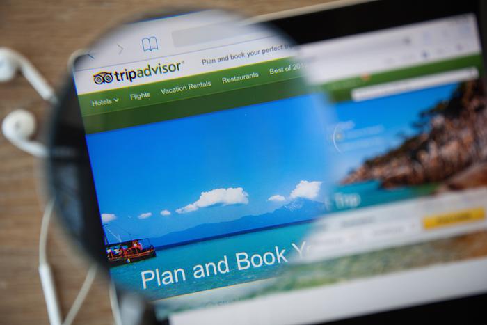 TripAdvisor clasifica y premia a sitios turísticos crueles, denuncia World Animal Protection. Foto: Shutterstock.