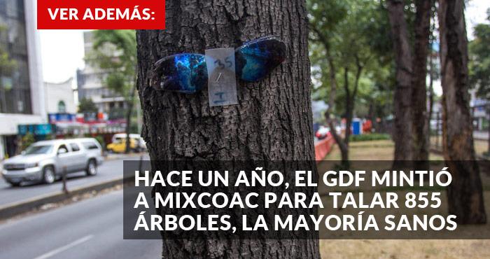 Promo-tala-mixcoac