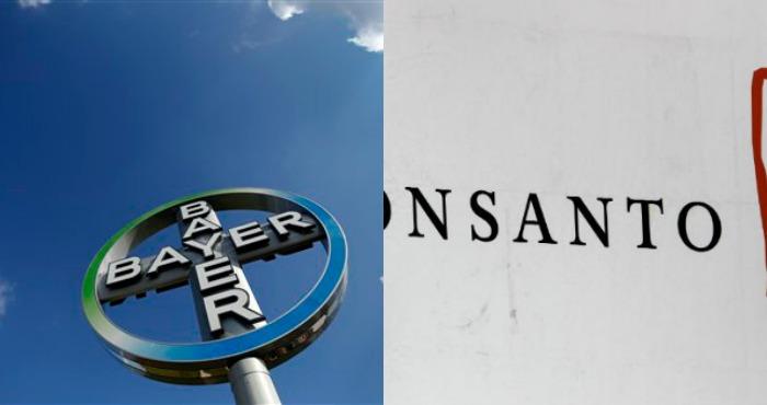 Monsanto, con sede en St. Louis, Missouri, indicó el miércoles por la noche que estaba revisando la propuesta de Bayer. Ninguna de las dos firmas dio otros detalles. Fotos: AP