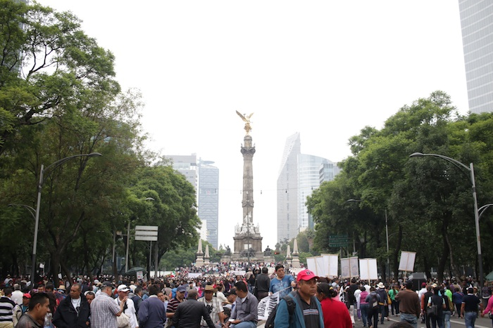 Foto: Francisco Cañedo.