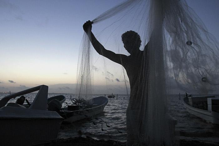 La pesca fantasma mata a 136 mil focas, leones marinos y ballenas al año. Foto: Cuartoscuro.