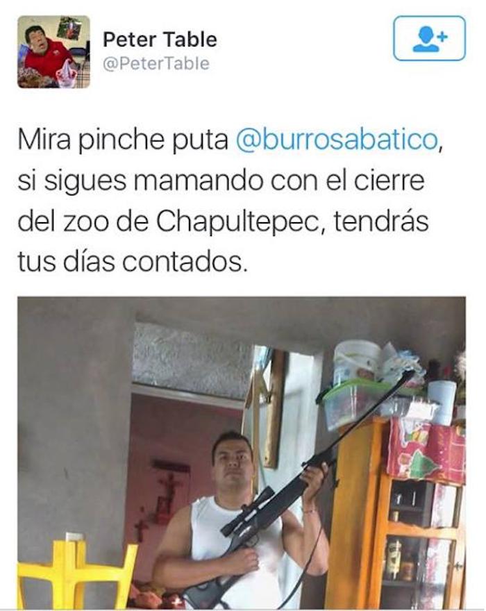 La presidenta de Proyecto Gran Simio México fue amenazada tras protestar por muerte de Bantú. Foto: Captura de pantalla.