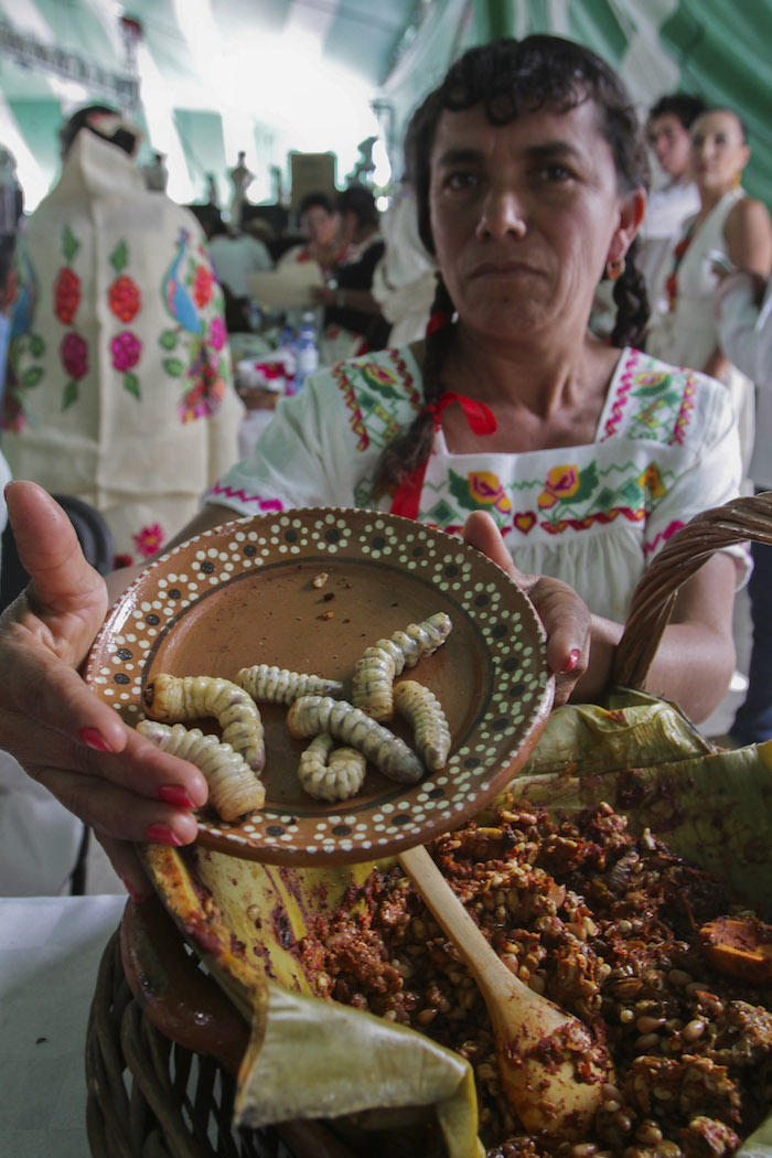 Feria Gastronómica en el estado de Hidalgo  /CUARTOSCURO.COM