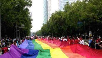 apartamentos para gays en ibizan hound