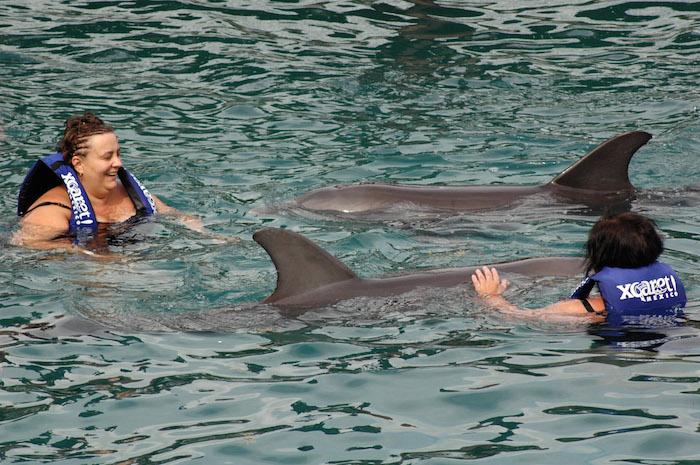 En 2009, el parque ecológico Xcaret ubicado a unos 80 kilómetros de Cancún y la empresa Delphinus obtuvieron un récord Guinness por tener el mayor número de nacimientos de crías de delfín a lo largo de un año en un solo delfinario, con once. Foto: Cuartoscuro.