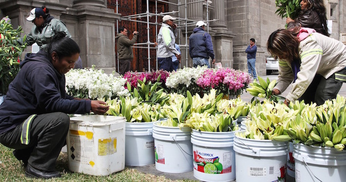 Vendedores de orquídeas en la Basílica de Guadalupe. Foto: Cuartoscuro.