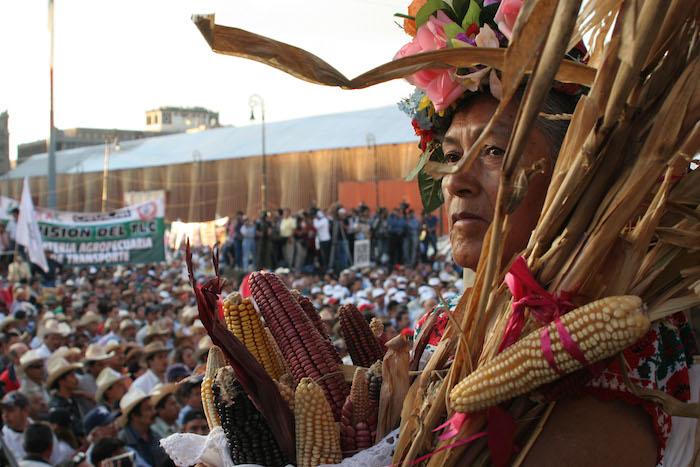 Hoy en día, el 60 por ciento de las tierras siguen en manos de los ejidatarios. Foto: Cuartoscuro