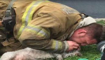 Cuanto gana un bombero en mexico