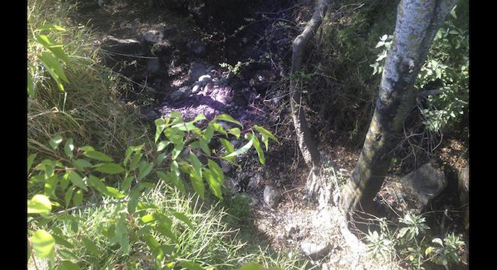 campesinos-de-puebla-acusan-a-textilera-de-contaminar-el-agua-y-la-tierra-con-quimicos