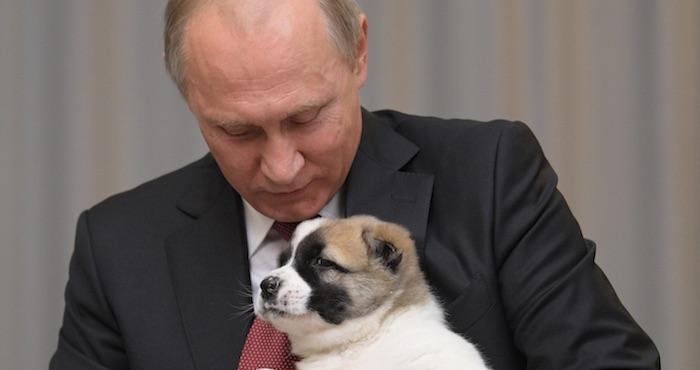 El Presidente de Turkmenistán le regala un cachorro a Vladimir Putin por su cumpleaños (VIDEO)