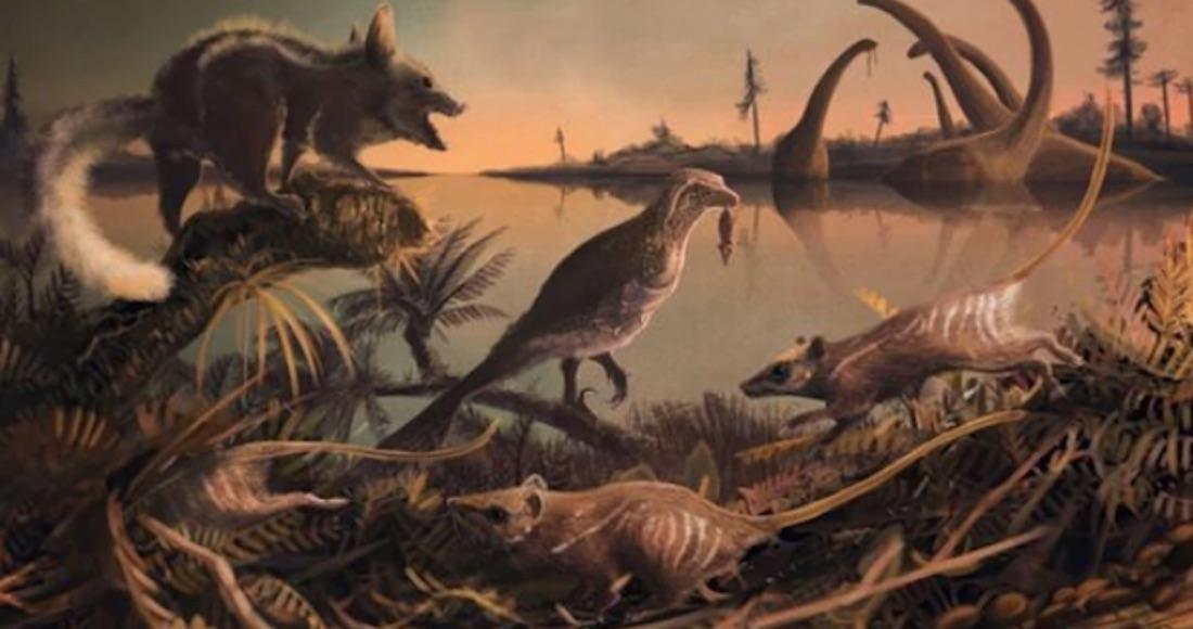 Encuentran restos fósiles de nuestros ancestros de unos 145 millones de años